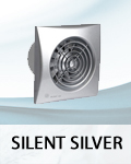 Silent Silver